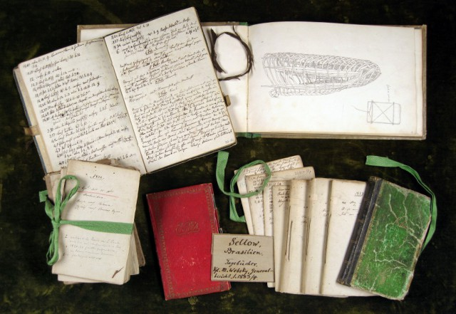 Tagebücher-Sellow