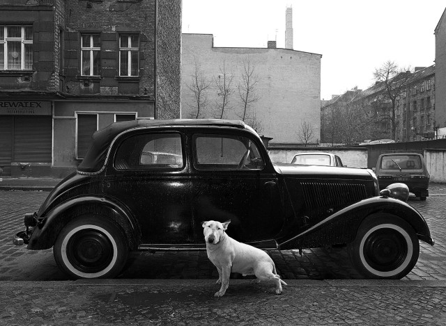 Fotos: Harf Zimmermann
