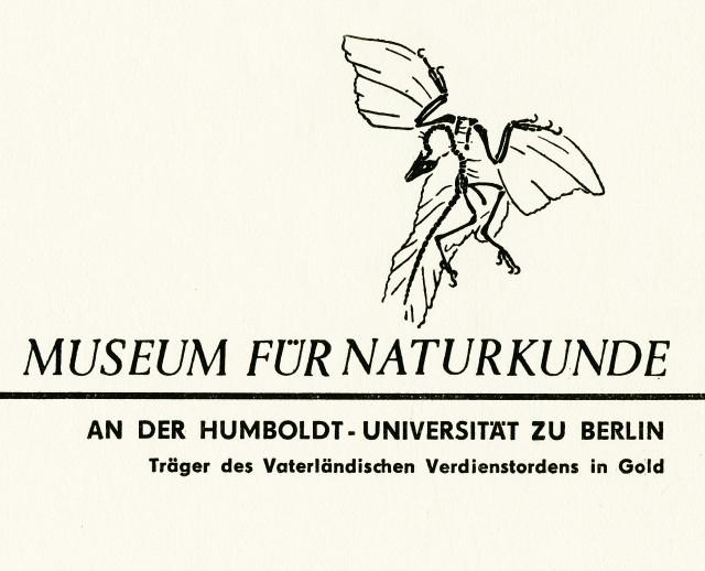 Logo_MfN_1