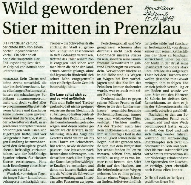 Prenzlau_2