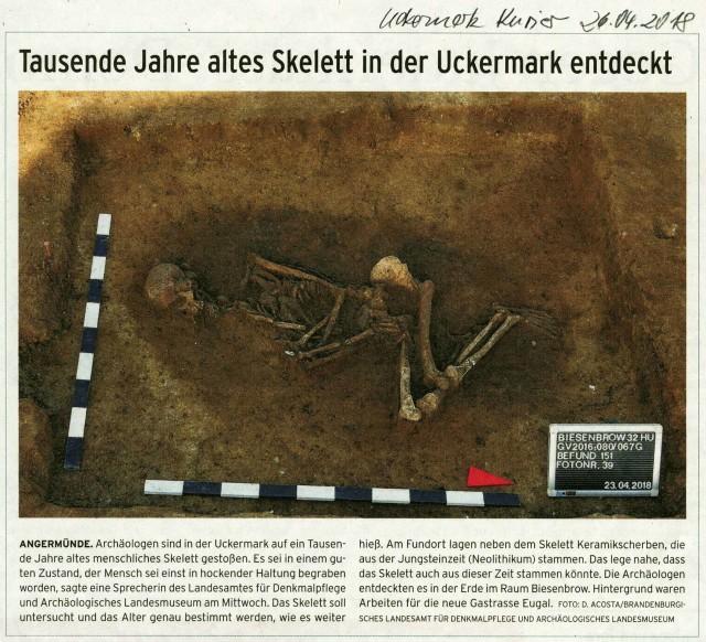 103_Biesenbrow_Jungsteinzeit