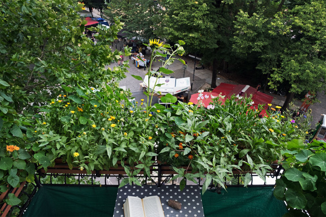 101-Foto-Jabs-unser-Balkon